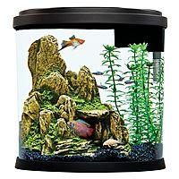 Top Fin Enchant Aquarium - 3.5 Gallon $15