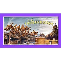 Twitch Prime: Truberbrook  (PC Digital Download) Free