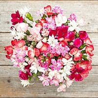 The Bouqs $40 Off Voucher: Select Flower Bouquets Free + Free Shipping