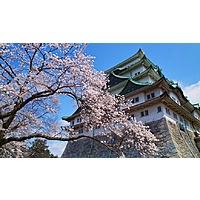 SAN-NGO (San Diego to Nagoya Japan) roundtrip for $390.