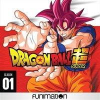 Digital HD Anime: Season 1: Dragon Ball Super, Attack on Titan, High Scool DxD Free & More Image