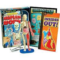 SmartLab Toys Squishy Human Body $15.36 FS w/ Prime