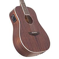 D'Angelico Premier Niagara Natural Mini Dreadnought Acoustic-Electric Guitars: Mahogany or Spruce $250 each + free s/h