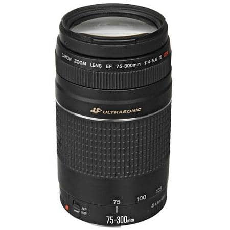 Canon EF 75-300mm F/4-5.6 III USM Autofocus Telephoto Zoom Lens - USA Warranty $99.95 fs @ adorama