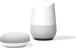 Google Home Mini for $24.00