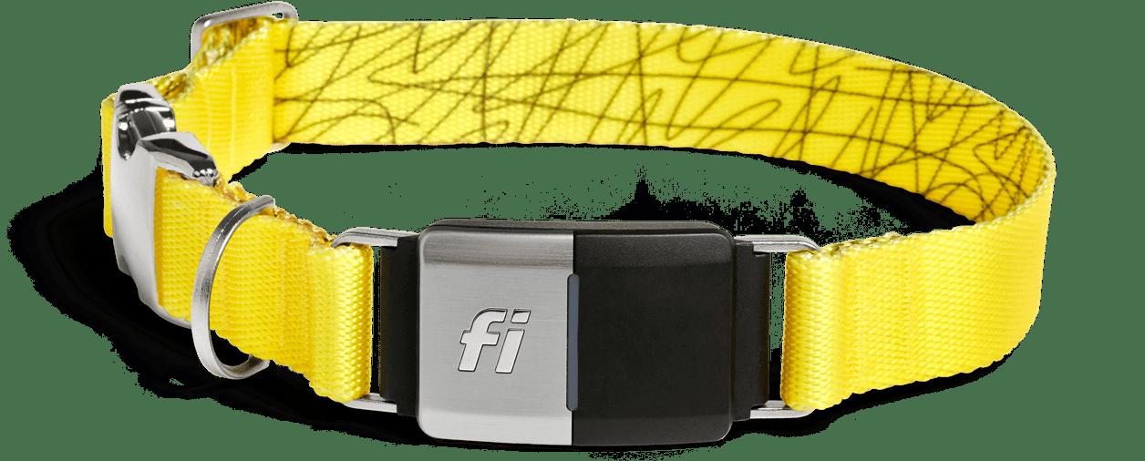 Fi Smart Dog Collar $75 Off