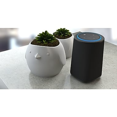 VAUX Cordless Home Speaker + Portable Battery for Amazon Echo Dot Gen 2 $39.95