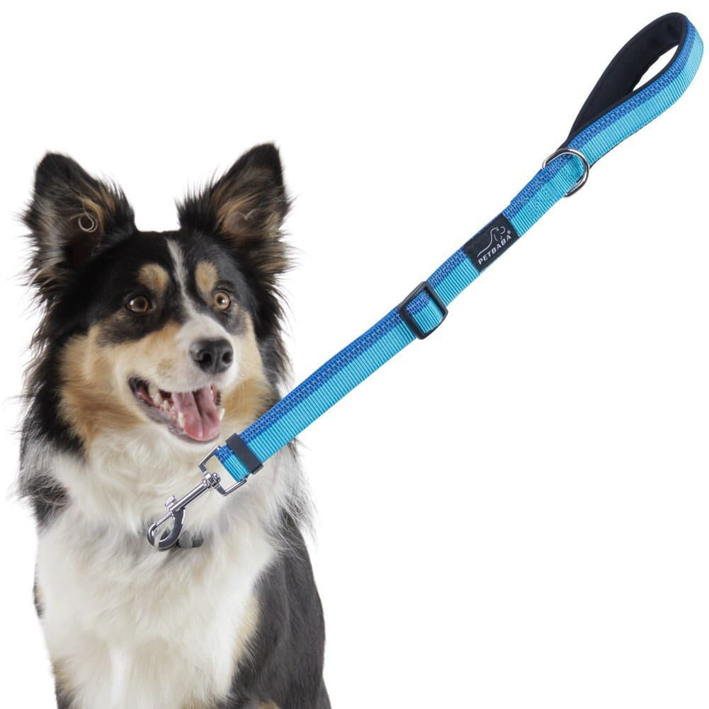 Short Dog Leash for $5.8 at Amazon w/ coupon