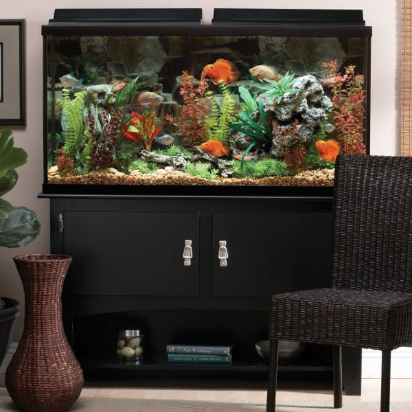 60 gallon marineland heartland aquarium ensemble. Black Bedroom Furniture Sets. Home Design Ideas