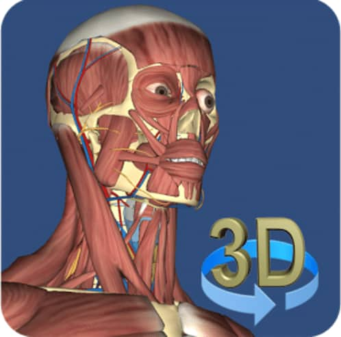 3D Anatomy for iOS Free