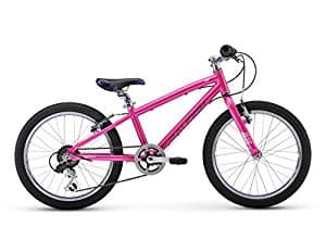 "Raleigh Bikes Lily 20 Girl's Mountain Bike, 20"" Wheels, Pink - $147.19 at Amazon"