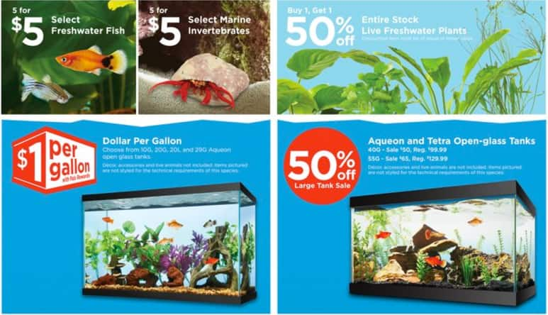 $1 per Gallon Fish Tank Sale at Petco