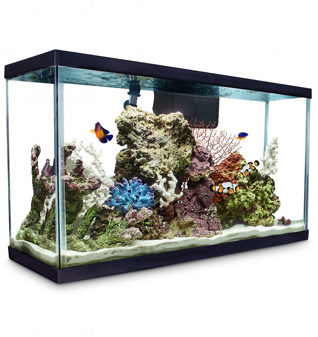 Aqueon Standard Glass Aquarium Tank 29 Gallon $31.49