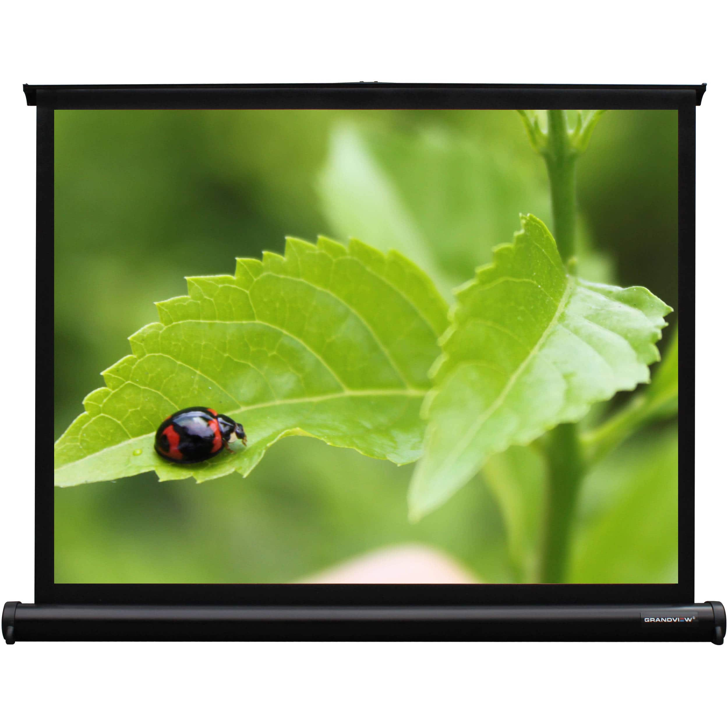 "GrandView  PT-UW040VWM4B U-Work 24 x 32"" Table-Top Projection Screen $59.95 @ B&H Photo w/ Free Shipping"