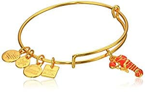 75% Off Select Alex and Ani Bracelets. Under $10 + Free Shipping w/Prime