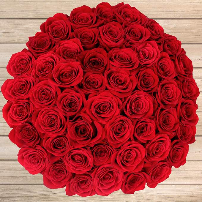 Valentine's Day 50 stem Red Roses for $50 @ Costco