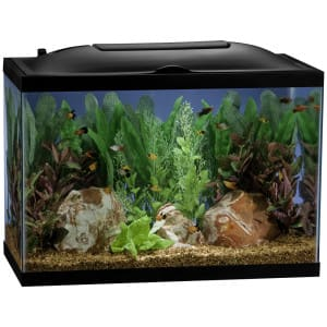 Marineland 55 gallon BioWheel LED Aquarium kit $67.49 + tax  - Store pickup