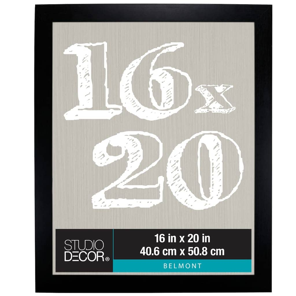 Michaels - Belmont Frames By Studio Décor (various sizes) on sale from $9.89.