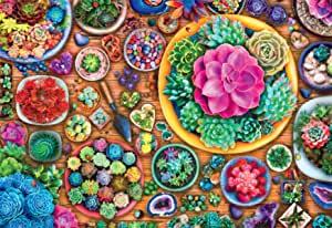 "Buffalo Games - ""Succulent Season"" - 2000 Piece Jigsaw Puzzle $13.97 (Was $19.99)"