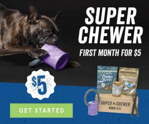 BarkBox - Super Chewer Dog Toy Box $5 First Month w/ 6 or 12 Month Signup