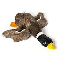 Amazon Deal: DogLoveIt Squeaky Mallard Duck Tough Plush Dog Toy on sale for $7.79 @Amazon