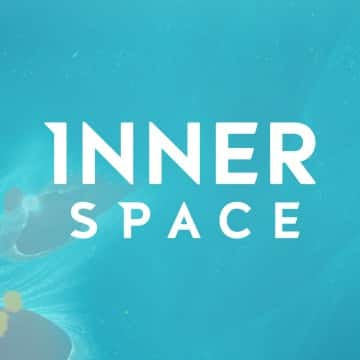 PSN - Innerspace The Art of Flight Dynamic Theme, $0