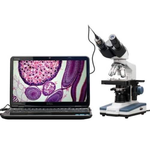 AmScope B120C-E1 Binocular Compound Microscope $189.57, 40X-2500X Magnification, LED Illumination, Abbe Condenser, Two-Layer Mechanical Stage, 1.3MP Camera and Software