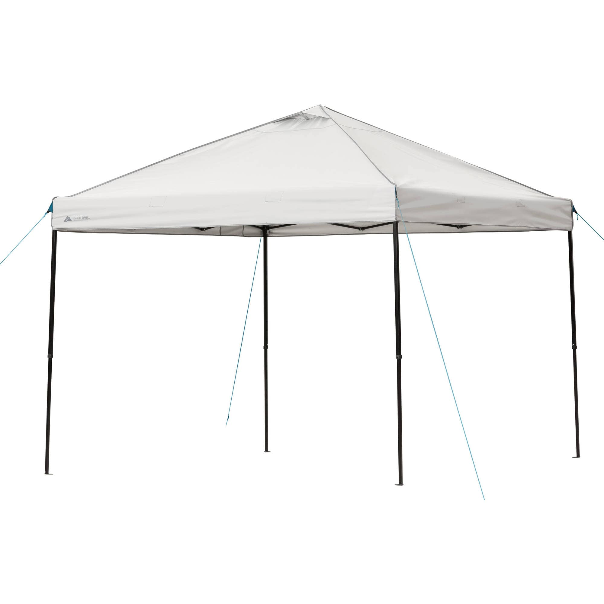 8x8 Canopy Tent Walmart Amp Best Designs Ideas Of Canopy