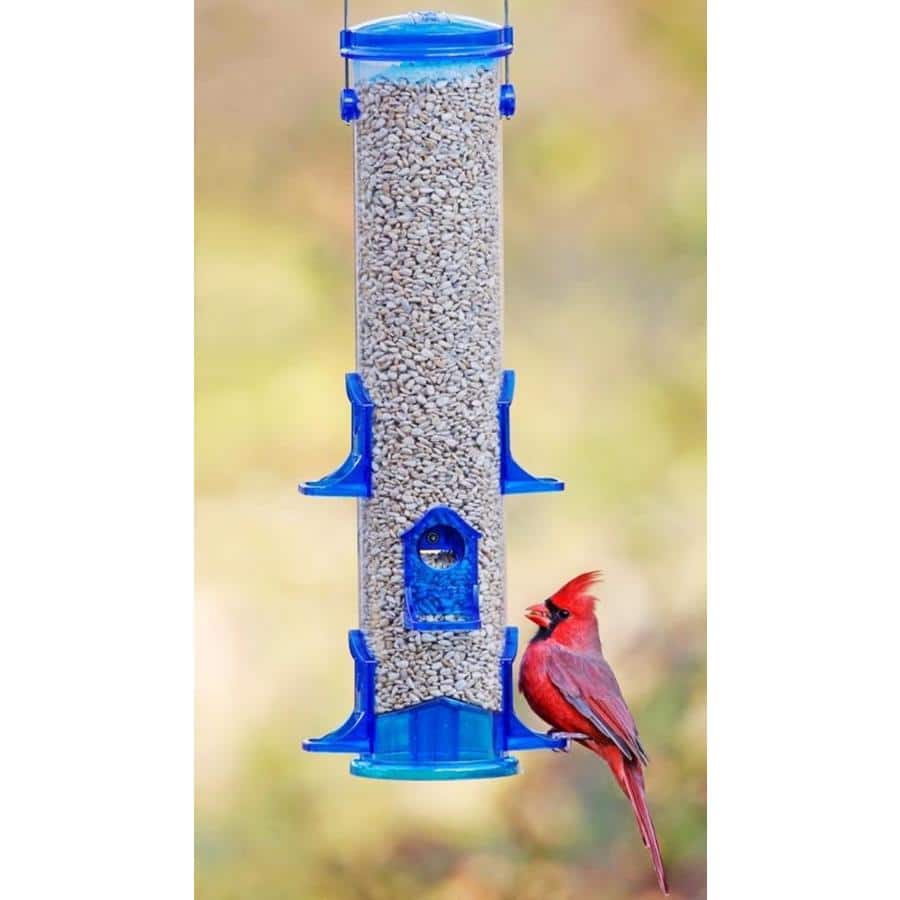 Stokes Select Blue and Clear Tube Bird Feeder $3.25 + Free Store Pickup at Lowe's (YMMV)