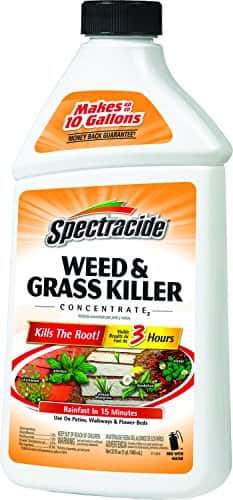 Spectracide Weed + Grass Killer Concentrate, Lowes $3.99 YMMV