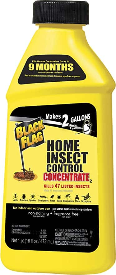 Black Flag Home Concentrate Insect Control, 16-Ounce $3.85