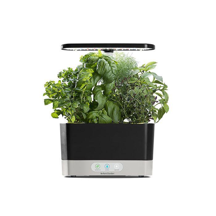 Aerogarden Harvest 6 pod indoor gardening light set with pods $99.95