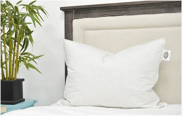 60% Off Double Down Surround Standard Size Hotel Pillow Set for $64 - as Featured At Ritz-Carlton Hotels (2 standard pillows and free pillow covers)