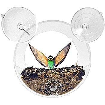 Grateful Gnome - Original Circular Window Bird Feeder - AMAZON $6.38 60% off!