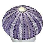 Sea Urchin Flameless Candle