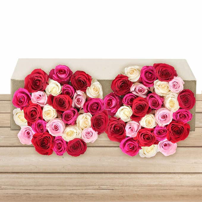Pre Order Mother S Day 50 Stem Roses 40 Free Shipping From