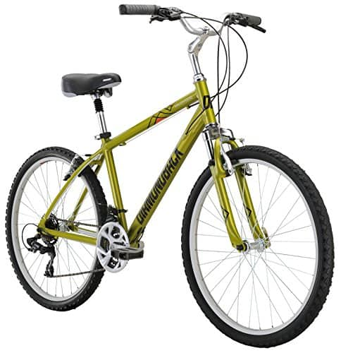 "Amazon Prime Day Diamondback Bicycles Wildwood Classic Comfort Bike 19"" LG $100"