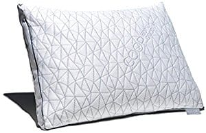 Coop Home Goods Eden Pillow as low as $39.95