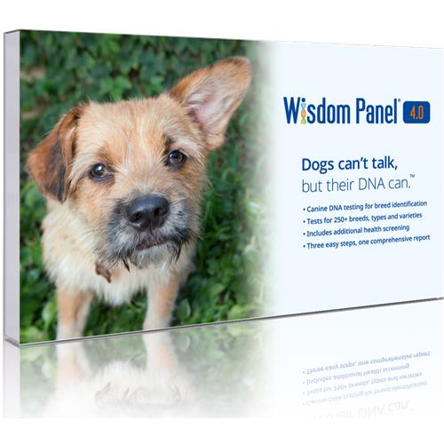 Mars Wisdom Panel 4.0 Canine DNA Testing- Dog DNA Test Kit $69.99