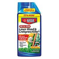 Free Chapin 1-Gallon Sprayer w/ Purchase of Bayer Advanced Product