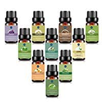 10 Pack of 10ML Essential Oils Set for $15.86 + FS