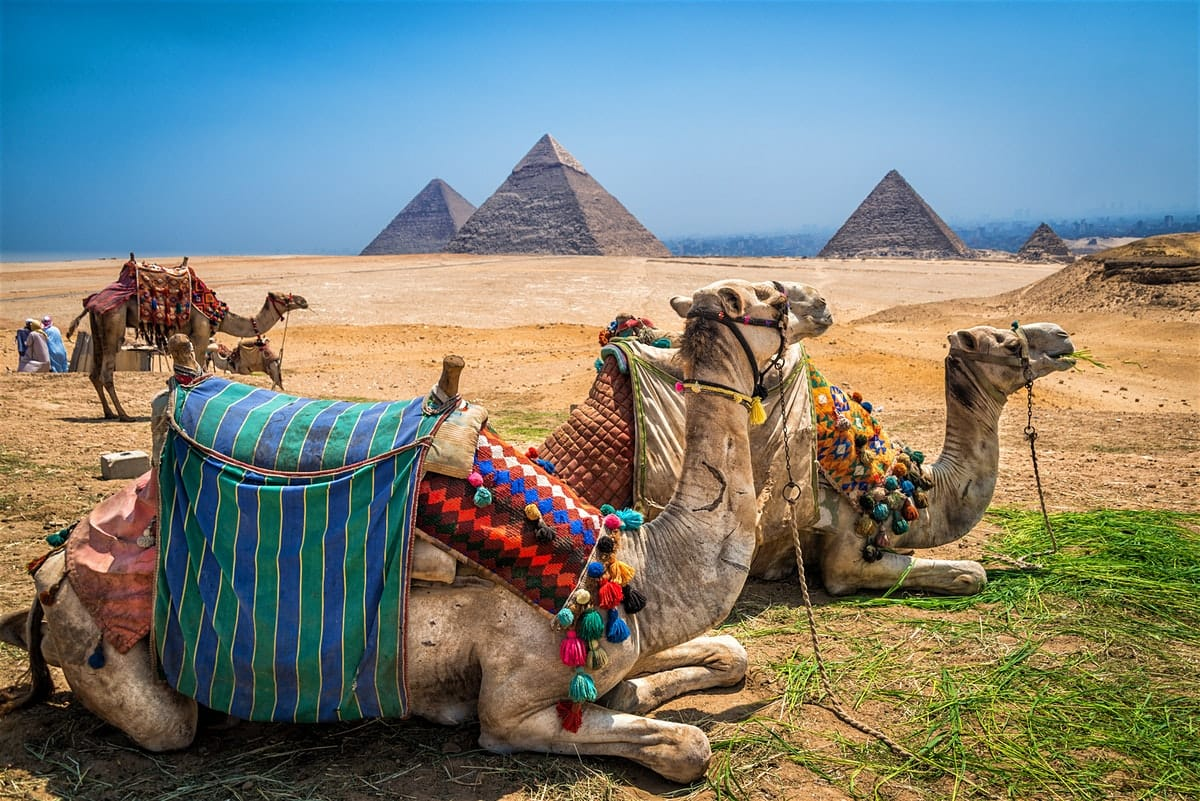 Washington DC to Cairo Egypt $556 RT Airfares on Swiss Air (Limited Travel May-June 2020)