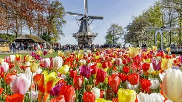 New York to Amsterdam Netherlands $250 RT Airfares on TAP Air Portugal (Flexible Ticket Travel April - May 2021)