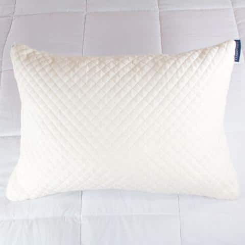 Sleep EZ shredded latex-filled pillow $26.70 w/free shipping