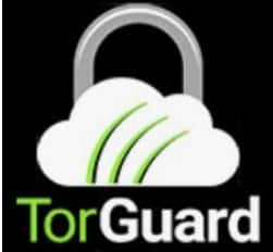TorGuard 4th of July Sale - - 50% Off For Life Code HOL50