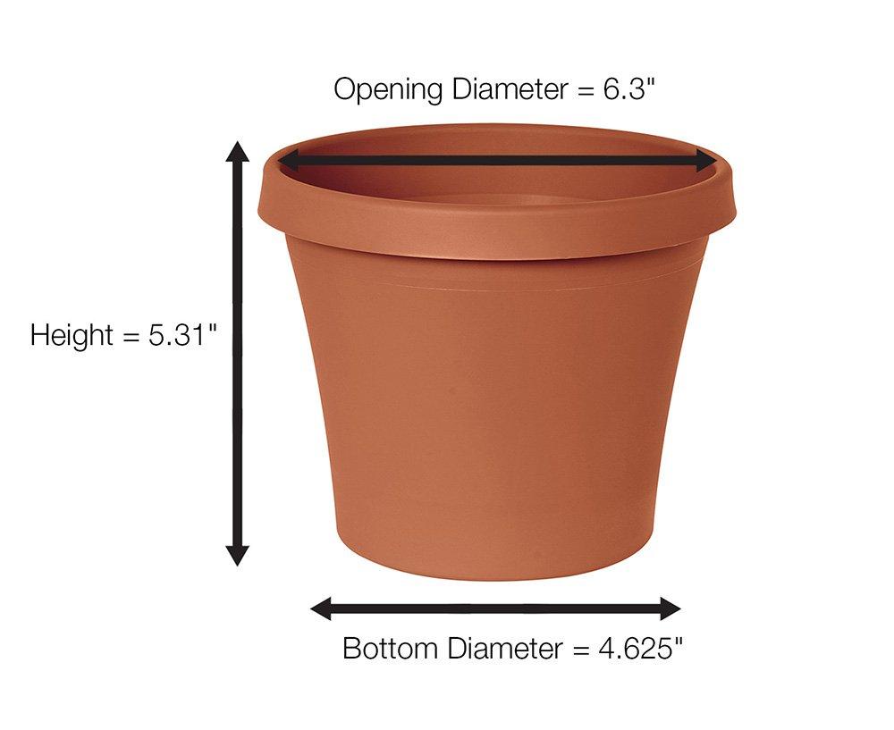 Bloem Fiskars 6 Inch Ariana Self-Watering Pot Planter $1.69 Amazon
