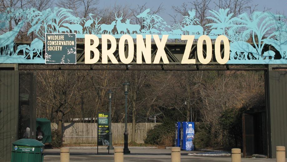 $70 off WCS Family Premium membership to Bronx Zoo, NY Aquarium and more - $125