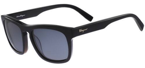 Salvatore Ferragamo Polarized Classic Square Sunglasses $60 + Free Shipping