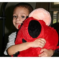 13deals.com Deal: Free $5 Gift Card When You Donate a Large Pillow Pet to a Child in Need - $5 + no shipping
