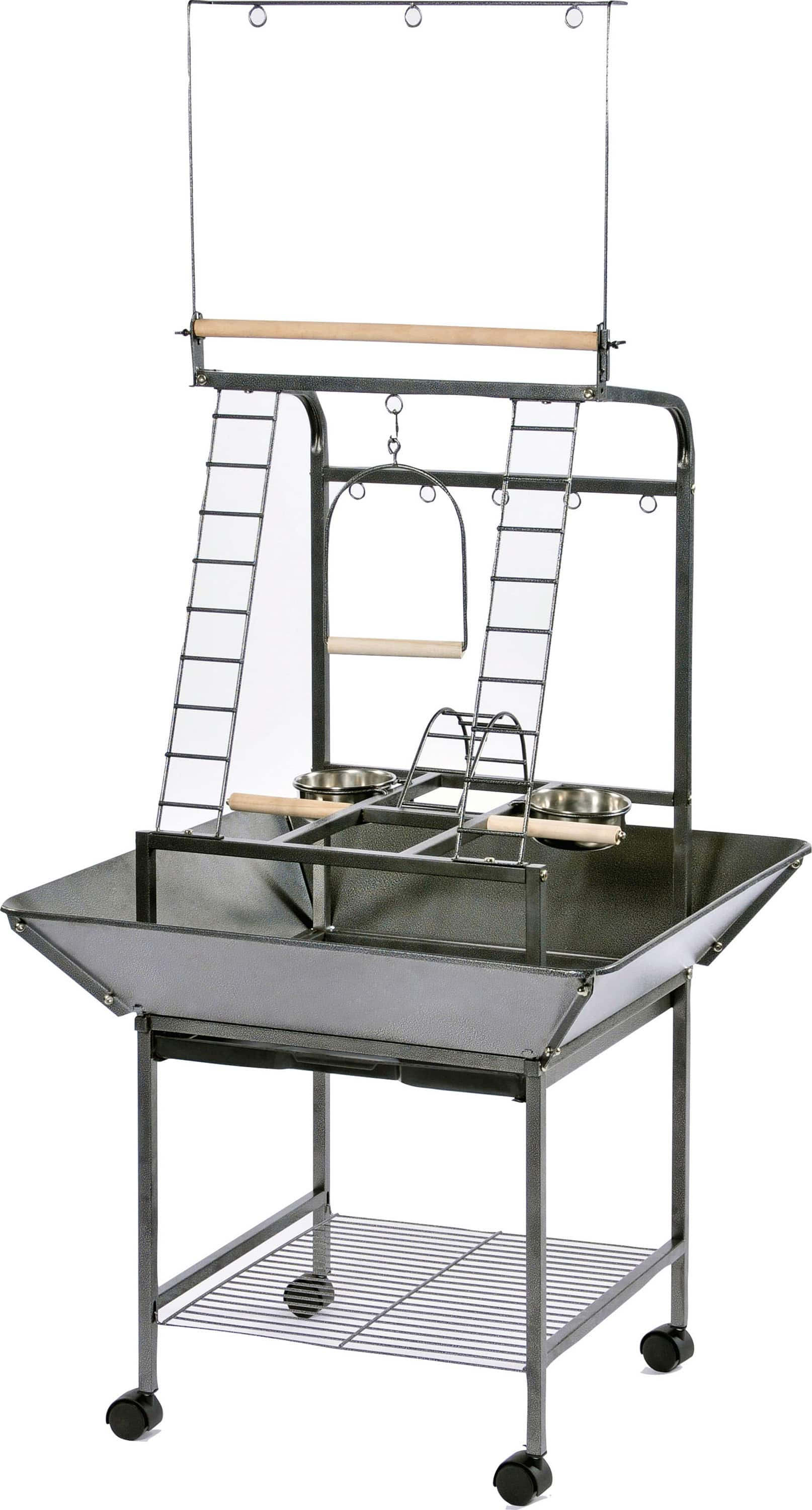 Prevue Pet Products Small Parrot Playstand (black) $92 + Free shipping $93